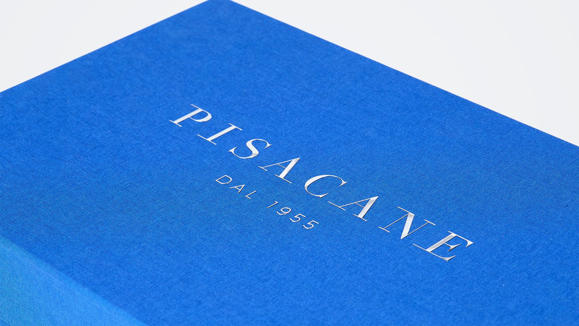 PISACANE_still_14-06-18_Pisacane((-tela-01-5